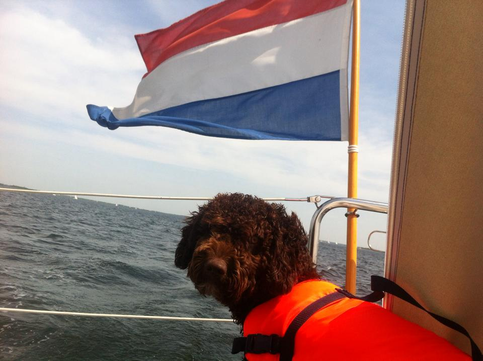 Buddy op de boot!