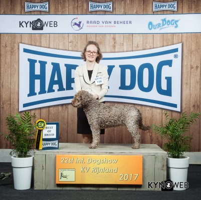 Best of Breed IDS KV Rijnland © Kynoweb